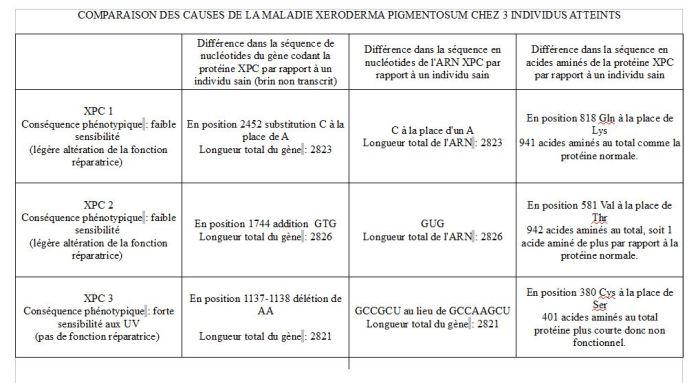 tableau bilan TP5